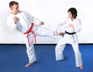 "7/8"" Martial Arts Mat"