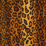 "Leopard Light 5/8"" Funky Animal Print Tiles"