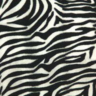 "Zebra 5/8"" Funky Animal Print Tiles"